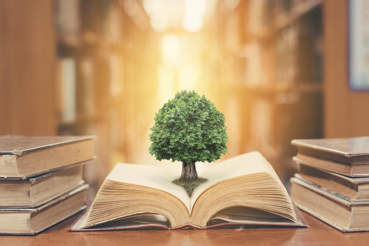 7 libros de educación financiera esenciales | Credimejora